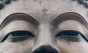 BuddhaWisdom